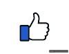 Thumb-Icon-RGB-100